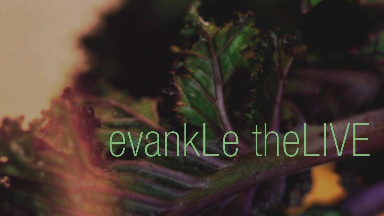 evankLe theLIVE